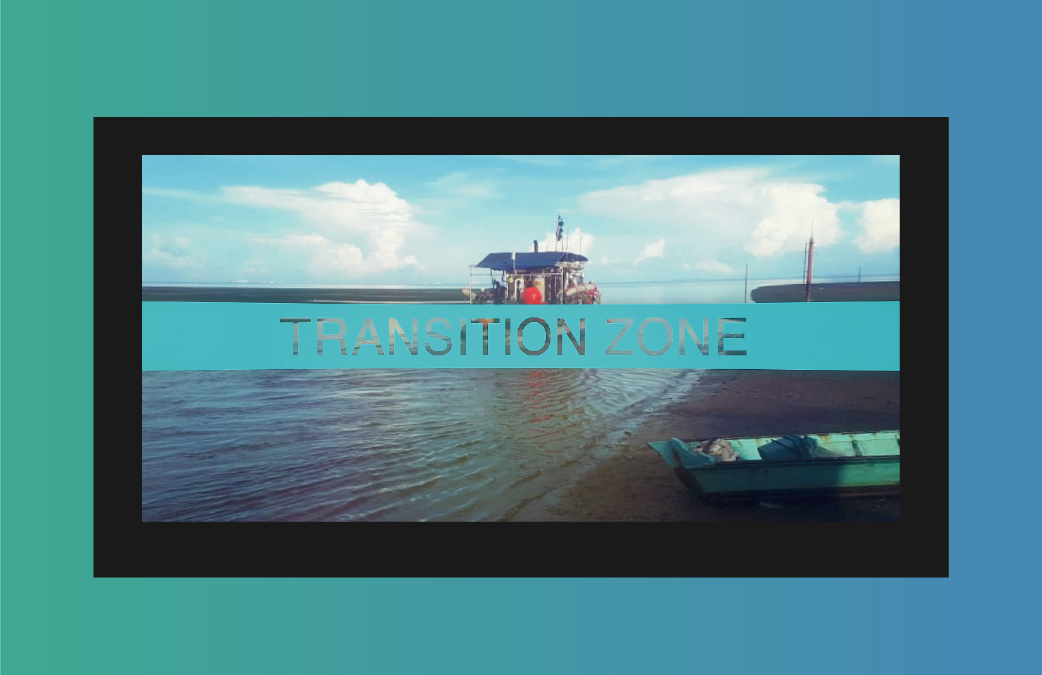 SAE Transition Zone and AquaVib Marine Vibrator
